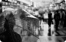 雨中的故事/